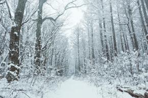 雪でお客様の予約がキャンセルになってしまうサロン経営を辞めたい方へ!